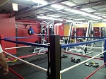 Floor Boxing Ring 14'