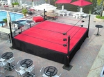 Pro Wrestling Ring 16' Style 1