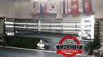 Competition Style Gym Boxing Ring - 22'